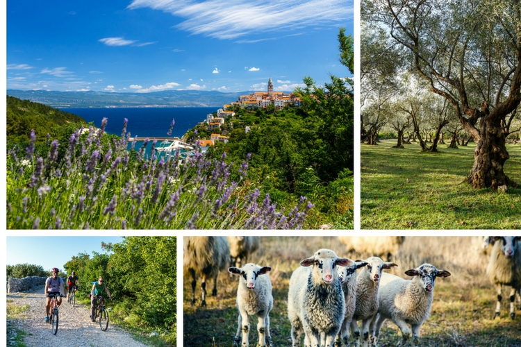 If you want to avoid the crowds, visit Krk in the spring or early autumn