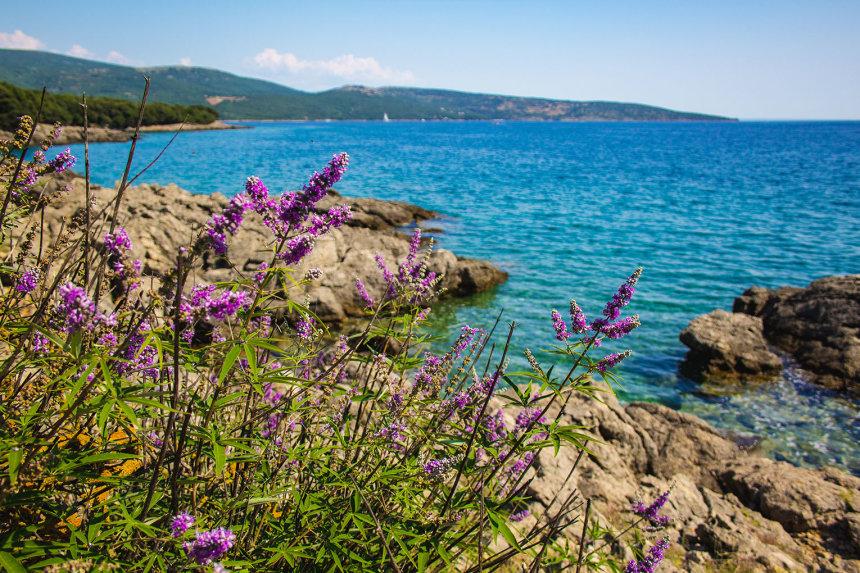 Frühling auf der Insel Krk